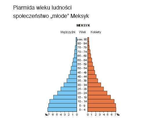 Piramidy wieku Źródło: Siałababamak, Piramidy wieku, 2004, domena publiczna.