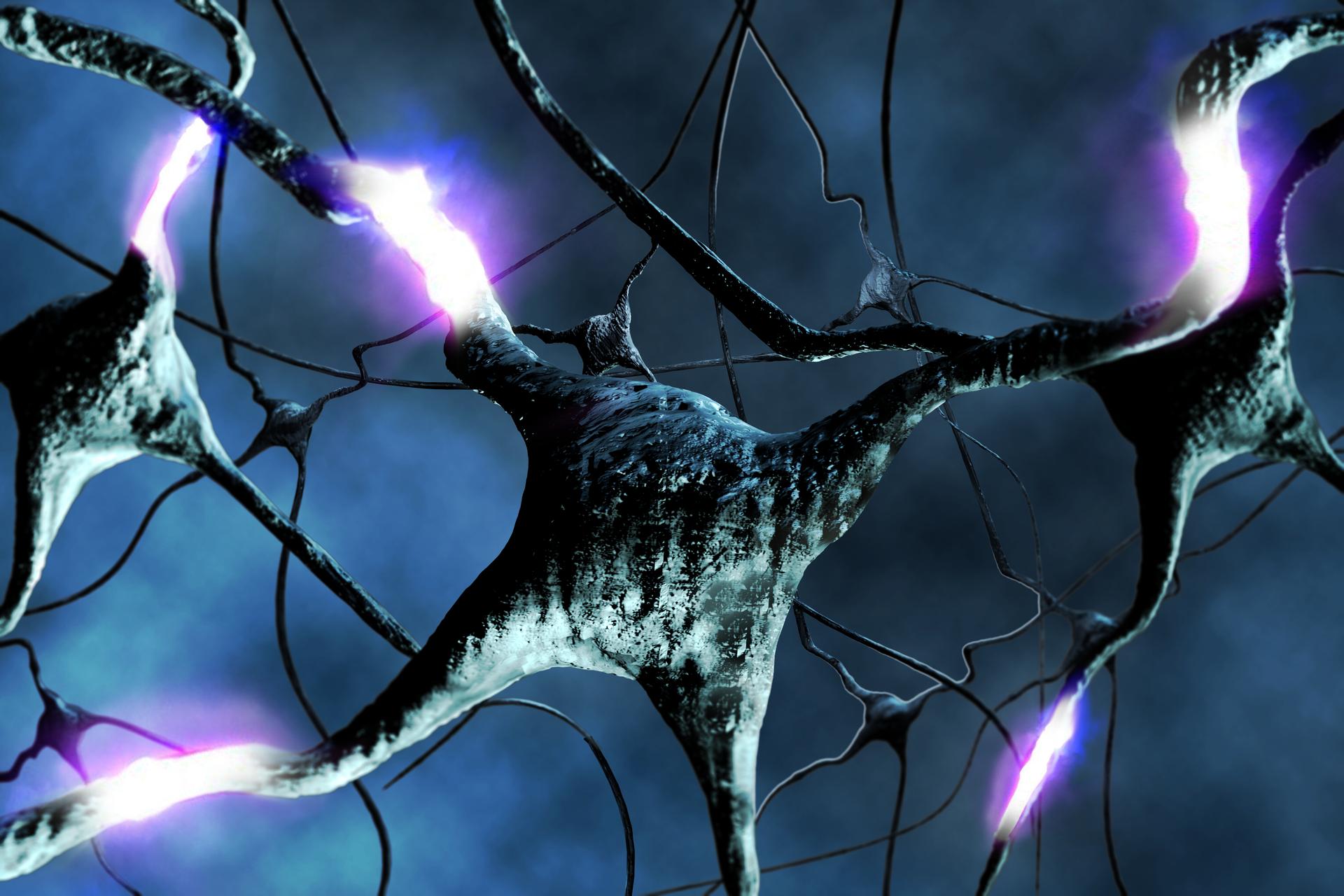 Ilustracja prezentująca model struktury przestrzennej komórek nerwowych wmózgu.