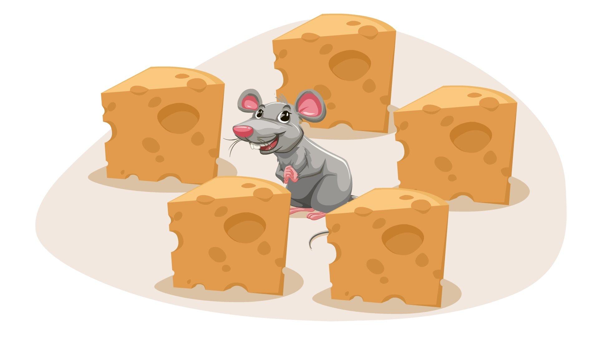 Ilustracja przedstawia mysz pomiędzy pięcioma kawałkami sera.