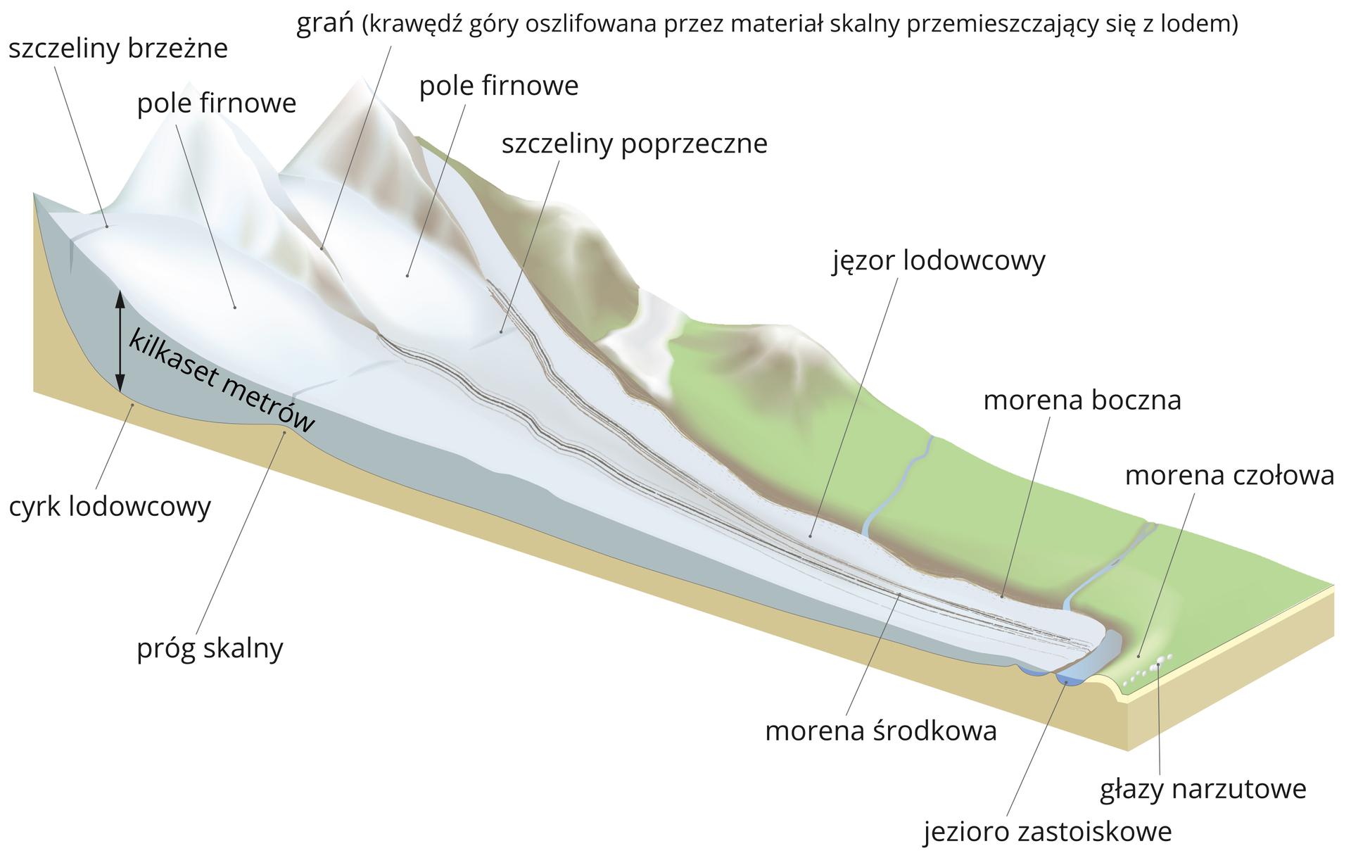 Na ilustracji lodowiec górski ogrubości kilkaset metrów na stoku górskim. Pole firnowe, szczeliny brzeżne ipoprzeczne, jęzor lodowcowy, cyrk lodowcowy ipróg skalny. Na przodzie lodowca morena środkowa, morena czołowa imorena boczna, głazy narzutowe ijeziora zastoiskowe.