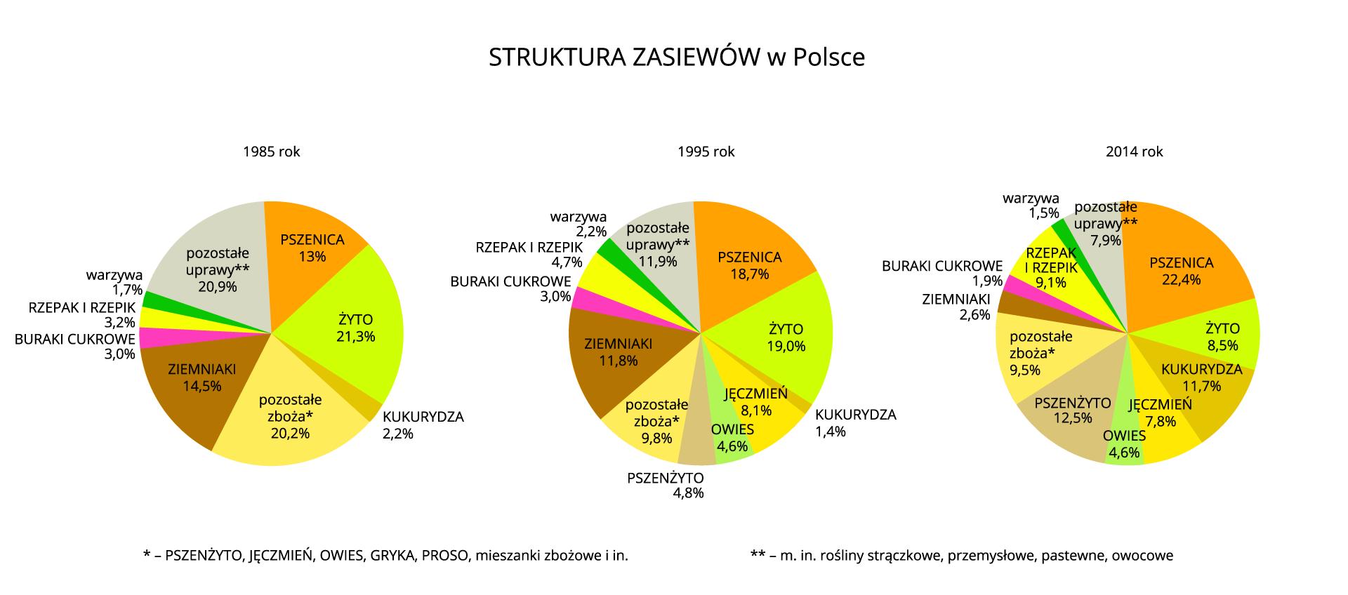 Na ilustracji trzy diagramy kołowe – struktura zasiewów wPolsce wlatach 1985, 1995, 2014.Pierwszy diagram: uprawa1985pszenica13,0% żyto21,3% kukurydza2,2% pozostałe zboża20,2% ziemniaki14,5% buraki cukrowe3,0% rzepak irzepik3,2% warzywa1,7% pozostałe uprawy20,9% Drugi diagram: uprawa1995pszenica18,7% żyto19,0% kukurydza1,4% jęczmień8,1% owies4,6% pszenżyto4,8% pozostałe zboża9,8% ziemniaki11,8% buraki cukrowe3,0% rzepak irzepik4,7% warzywa2,2% pozostałe uprawy11,9%  Trzeci diagram: uprawa2014pszenica22,4% żyto8,5% kukurydza11,7% jęczmień7,8% owies4,6% pszenżyto12,5% pozostałe zboża9,5% ziemniaki2,6% buraki cukrowe1,9% rzepak irzepik9,1% warzywa1,5% pozostałe uprawy7,9%