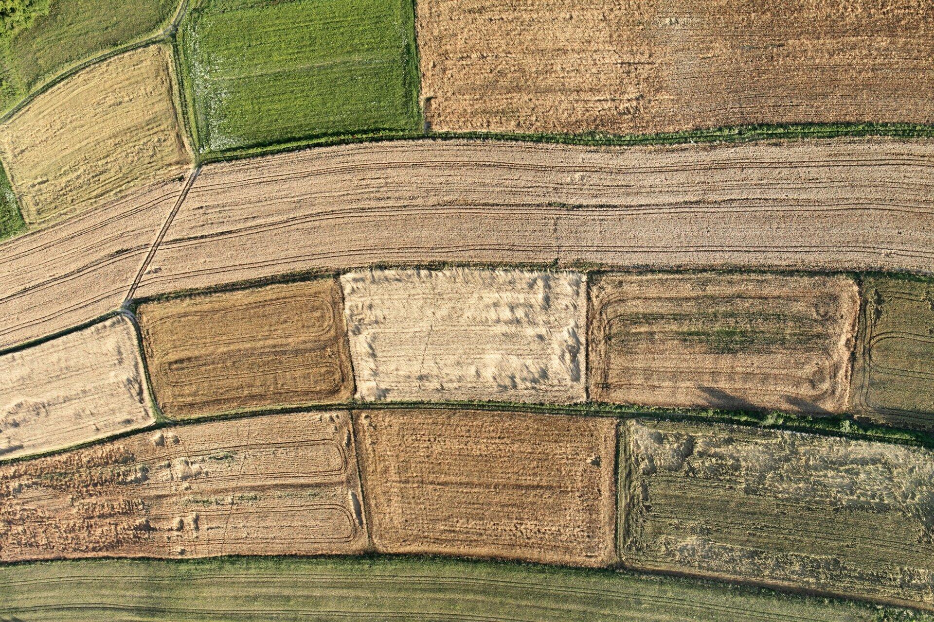 Rysunek pola uprawnego widzianego zsamolotu.