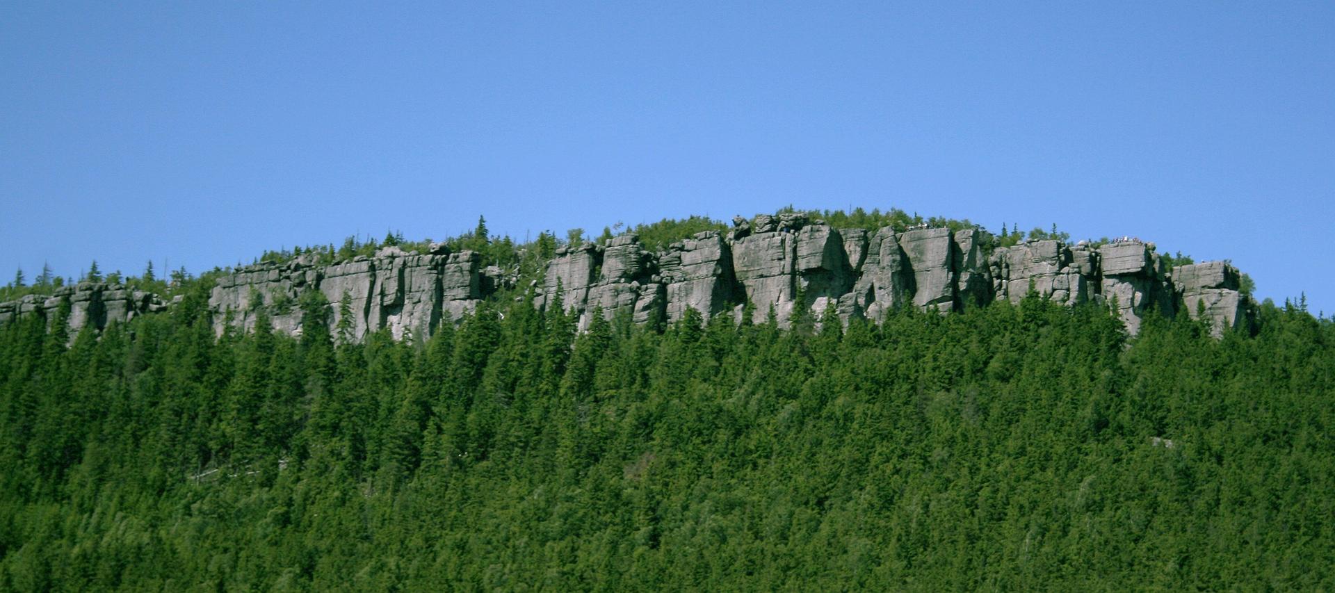 Fotografia przedstawia spłaszczone, popękane skały, porośnięte gęstym borem świerkowym. To Szczeliniec Wielki, najwyższy szczyt wParku Narodowym Gór Stołowych.
