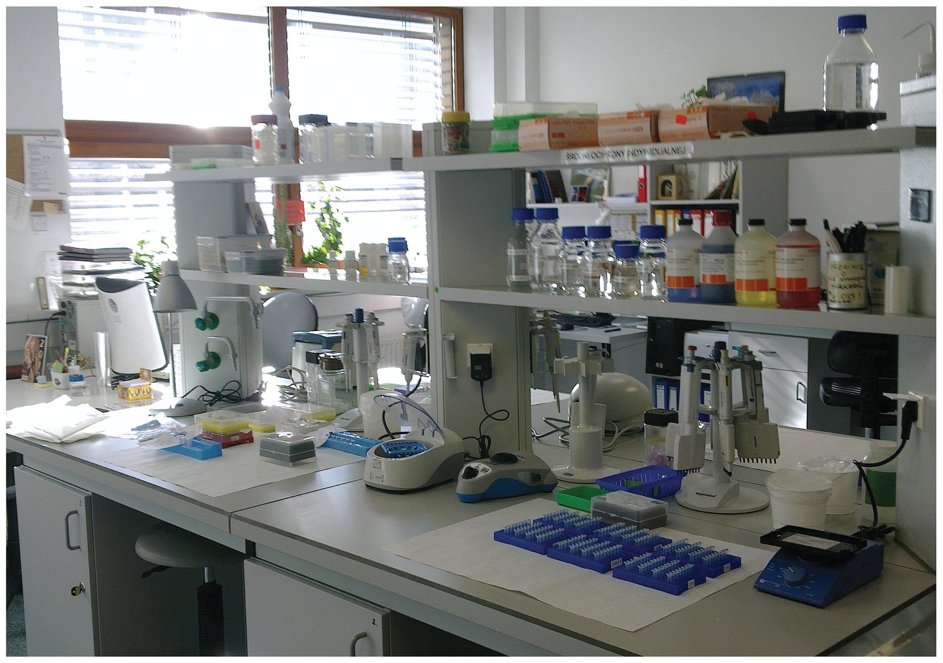 Fotografia przedstawia wnętrze laboratorium. Na białych stolikach stoją różne urządzenia badawcze, większość wkolorze szafirowym ibiałym. Na półkach nad nimi umieszczono liczne kolorowe pojemniki zsubstancjami chemicznymi. Bakterie wykorzystuje się wbadaniach genetycznych.