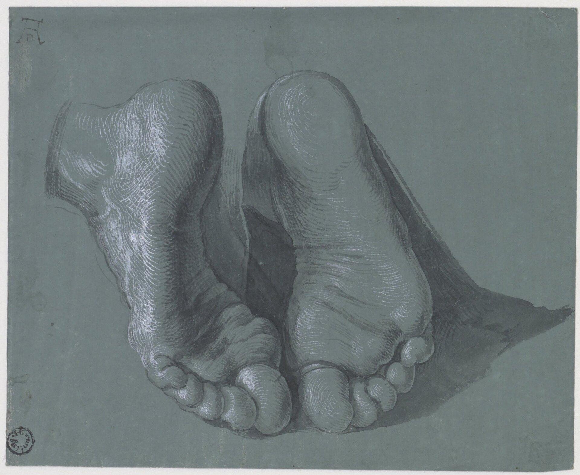"""Ilustracja przedstawia rysunek """"Studium dwóch stóp"""" autorstwa Albrechta Dürera. Dzieło ukazuje podeszwy dwóch stup narysowane na szarym papierze. Artysta posługując się drobnymi ciemnymi kreskami wydobył cienie oraz kontury, natomiast subtelnymi pociągnięciami białej kredki zaznaczył światło układające się na lewej stopie. Rysunek skomponowany jest statycznie."""