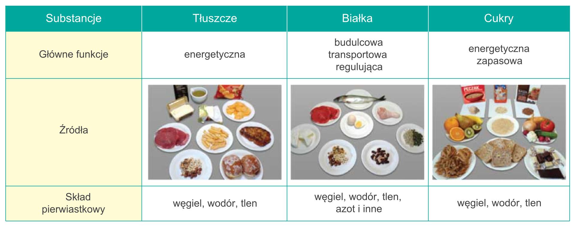 Substancje oznaczeniu biologicznym, ich funkcje oraz źródła występowania