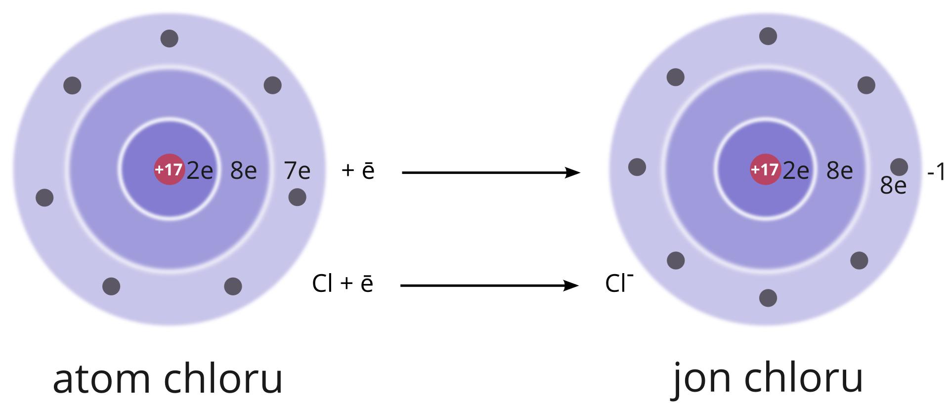 """Ilustracja przedstawia proces tworzenia ujemnego jonu chloru. Po lewej stronie znajduje się koło podzielone na trzy kręgi. Kręgi to powłoki. Centralnie położone powłoka to powłoka zsymbolem litery """"ka"""". Na powłoce jest liczba dwa odnosząca sie do dwóch elektronów. Elektron to litera """"e"""". Następny krąg to powłoka zliterą """"el"""". Na tej powłoce jest liczba osiem ilitera """"e"""". Powłoka """"el"""" mieści maksymalnie osiem elektronów. Zewnętrzna powłoka, największa, to powłoka oznaczony literą """"em"""". Wzdłuż powłoki """"em"""" zaznaczone są czerwone punkty. To siedem elektronów. Całe koło to atom chloru. Po prawej stronie znajduje się większe koło. To jon chloru. Koło podzielone jest na trzy kręgi. Centralny krąg, to powłoka """"ka"""" zliczbą dwóch elektronów. Następna powłoka, to orbital """"el"""" zliczbą osiem odnoszącą się do ośmiu elektronów. Zewnętrzna, największa powłoka, to powłoka """"em"""". Wzdłuż powłoki """"em"""" znajduje się osiem czerwonych punktów. Punkty to osiem elektronów. Powyżej koła znajduje się symbol """"minus jeden"""". Wsamym środku koła atomu chloru ijonu chloru pomarańczowe punkty. Czerwona strzałka skierowana grotem na środek kół. Poniżej strzałki symbol """"plus siedemnaście""""."""