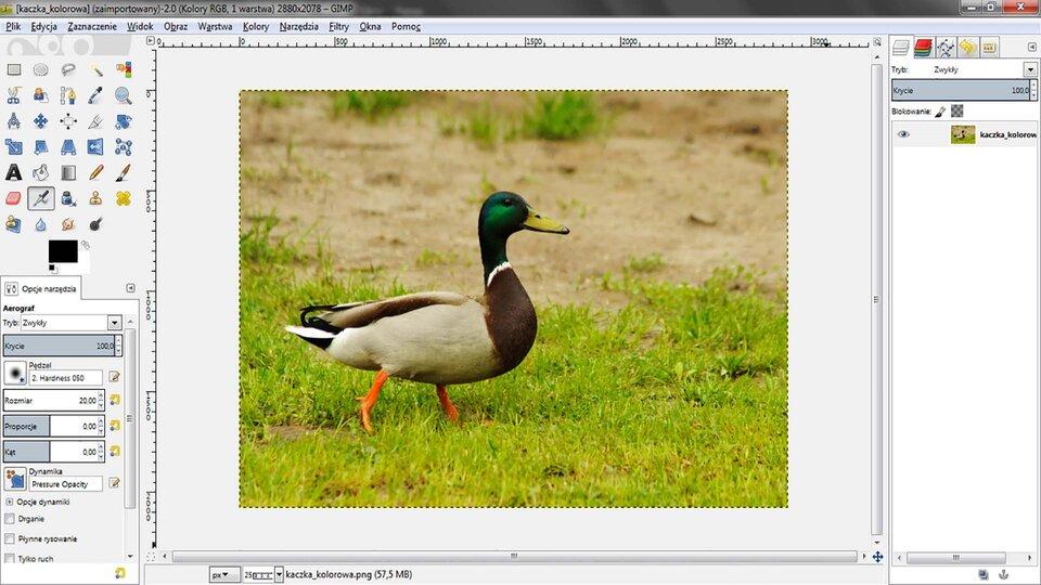 Animacja: Modyfikowanie fotografii