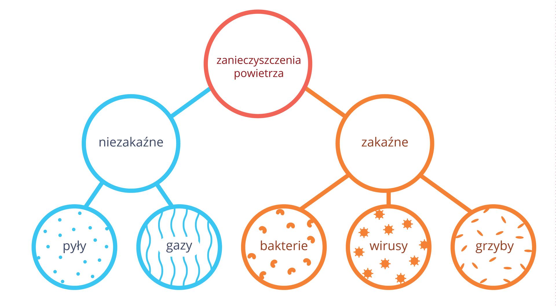 Schemat przedstawia klasyfikację zanieczyszczeń powietrza wformie kolorowych kół. Napis wczerwonym kole: zanieczyszczenia powietrza. Od niego wlewo błękitne koło znapisem: niezakaźne. Od niego dwa koła, zkropkami: gazy izliniami: pyły. Wprawo pomarańczowe koło znapisem: zakaźne. Od niego trzy koła, symbolizujące: zfasolkami bakterie, ze słoneczkami wirusy izpałeczkami grzyby.