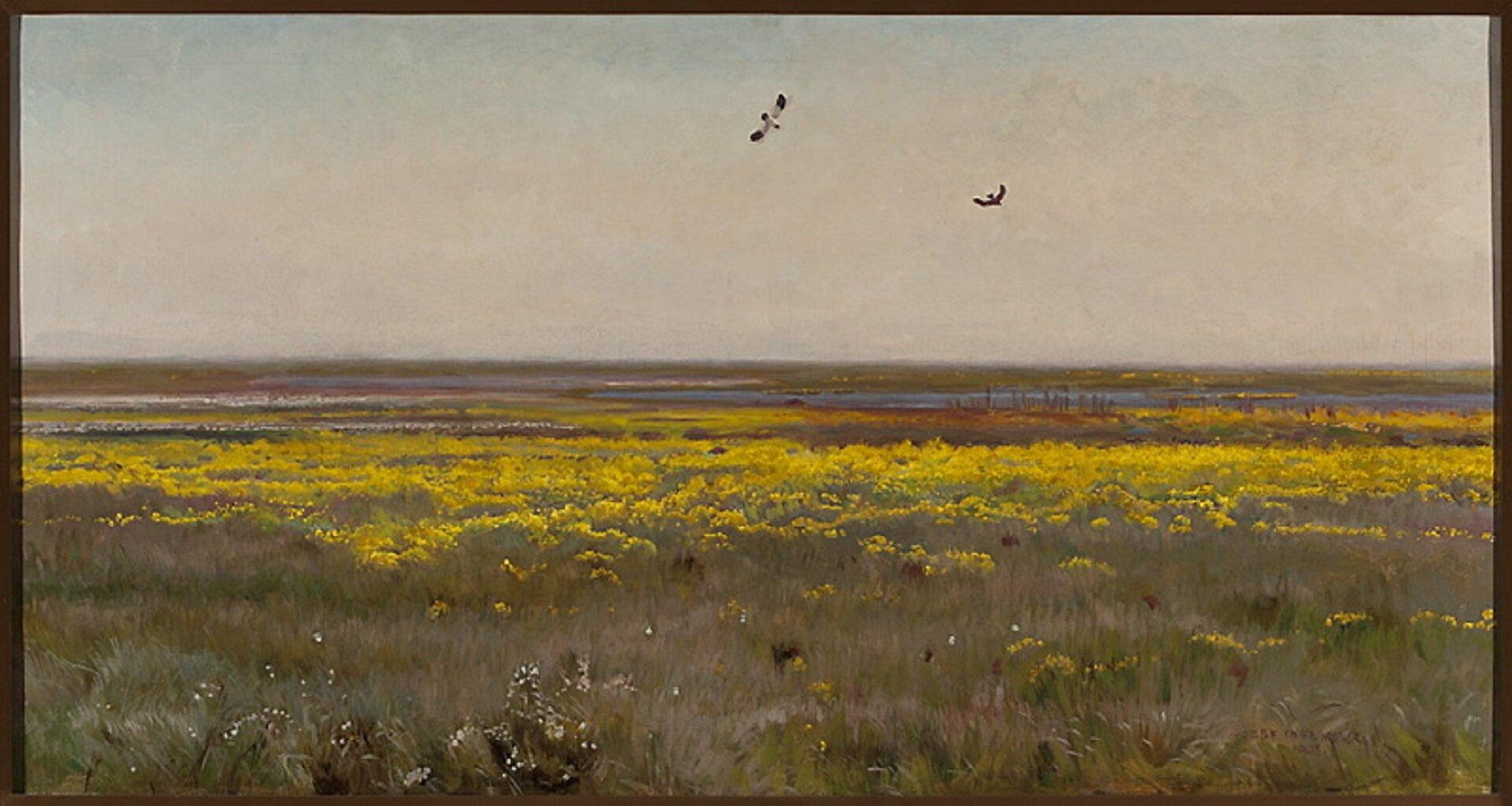 """Ilustracja przedstawia obraz olejny """"Kaczeńce"""" autorstwa Józefa Chełmońskiego. Horyzontalna kompozycja ukazuje rozległy pejzaż podmokłej łąki zkwitnącymi żółtymi kaczeńcami. Na pierwszym planie, pośród beżowo-zielonych, wysmukłych traw, namalowanych lekkimi pociągnięciami pędzla znajdują się białe plamki drobnych kwiatuszków. Dalej rozciąga się żółty pas miękko malowanych kaczeńców. Wtle ukazana jest wąska, szaro-niebieska linia stawu, otoczona rudawo-zielonymi połaciami traw. Nad łąkami, na tle różowo-błękitnego nieba unoszą się dwa ptaki. Otwarta kompozycja utrzymana jest wciepłej, wąskiej gamie barw zdominantą żółci."""