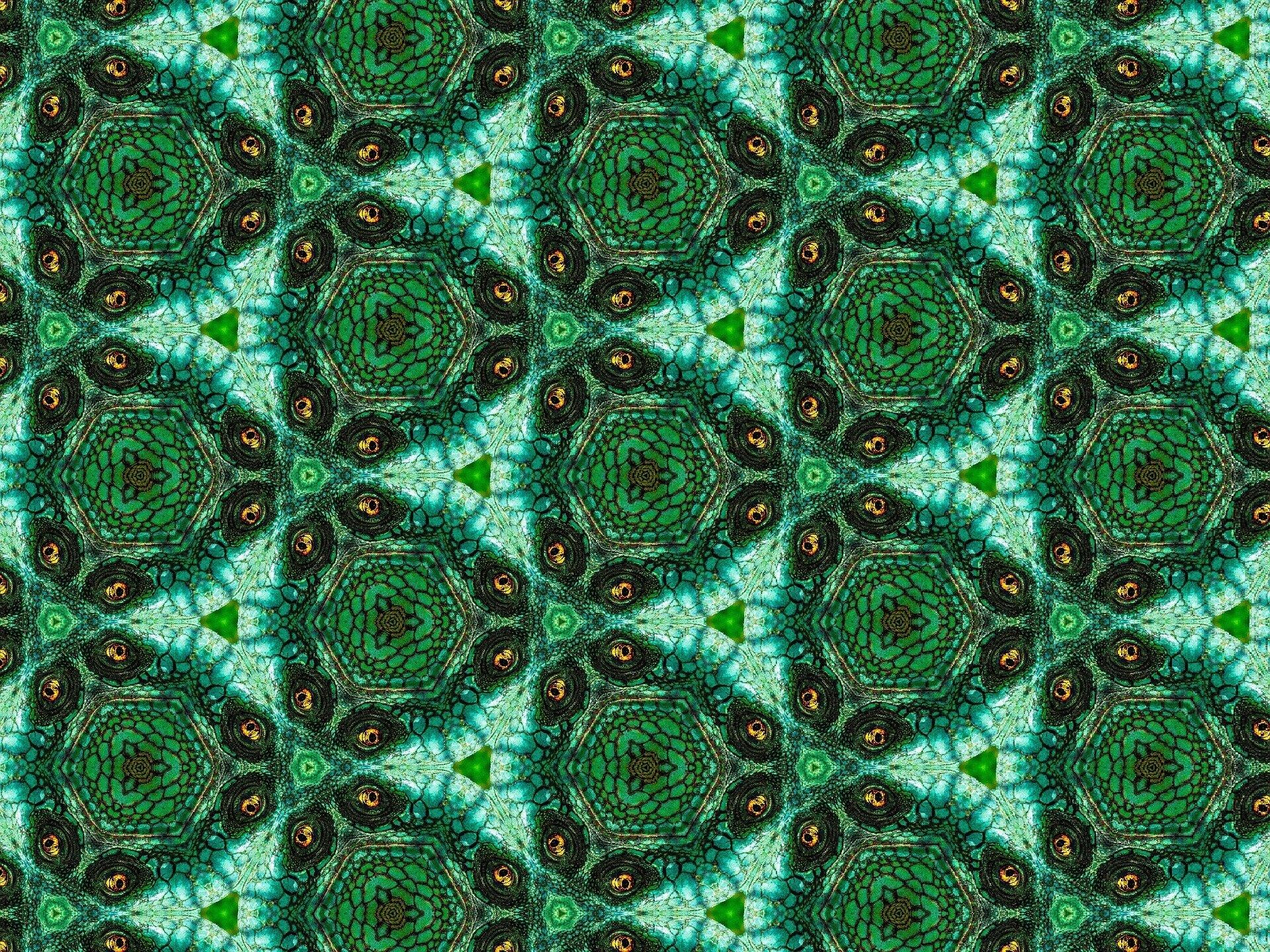 Ilustracja przedstawia kompozycję, do stworzenia której wykorzystano symetryczne, lustrzane odbicia na wzór obrazu kalejdoskopowego. Praca składa się zdwóch rodzajów, powtarzających się trójkątnych płaszczyzn. Mniejsze jasne trójkąty zmałymi zielonymi trójkącikami pośrodku wpisane są pomiędzy duże ciemne trójkąty zbrązowo-pomarańczowymi, podwójnymi plamkami na rogach. Wszystkie elementy układają się wjednolity deseń. Praca utrzymana jest wwąskiej, zielono-brązowej gamie barw zakcentami oranżu.