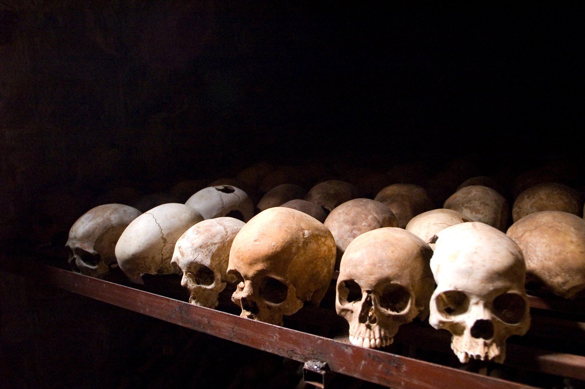 na zdjeciu widac czaszki pomordowanych ludzi