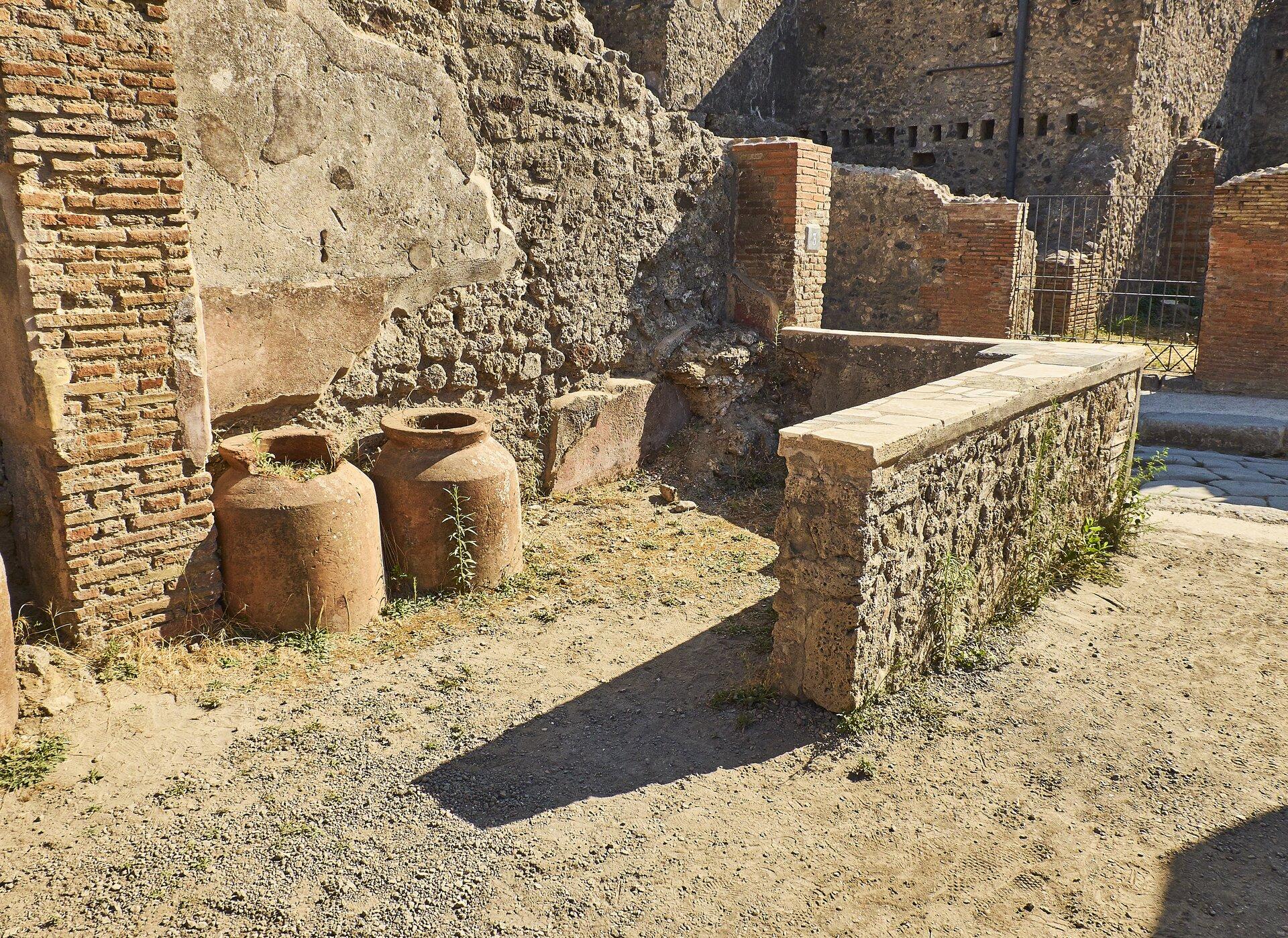 Kolorowa ilustracja przedstawia aktualny stan zabudowań Pompejów. Na fotografii ukazano fragmenty domów iulic miasta. Na pierwszym planie widoczne jest wnętrze pomieszczenia gospodarczego; pod ścianą stoją dwa wysokie dzbany tzw. pitosy. Podłoże wyłożone jest żwirem iporośnięte trawą.
