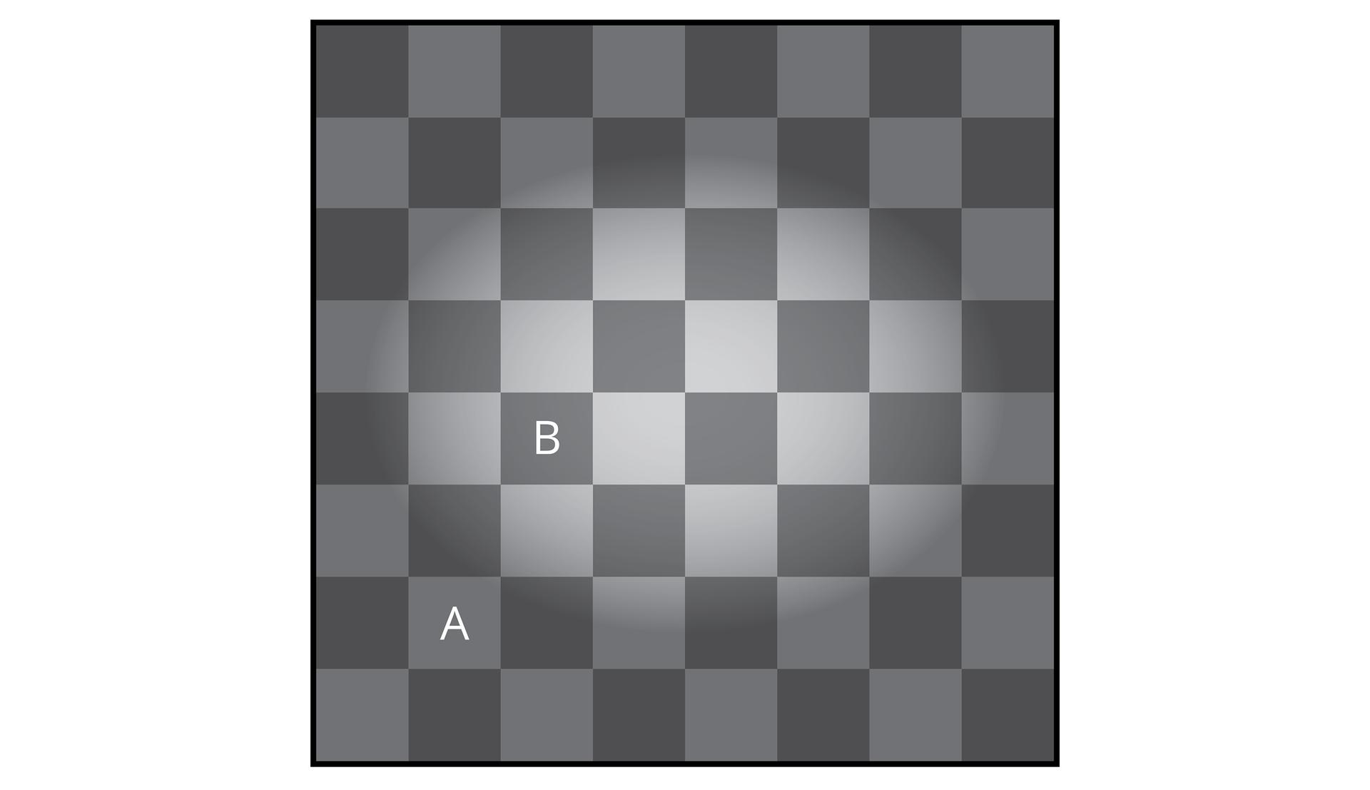 Wgalerii znajdują się przykłady obrazów, wprowadzających mózg wbłąd. Ilustracja przedstawia szaro – ciemnoszarą szachownicę. Część środkowa wydaje się uwypuklona. Który kwadrat: Aczy Bjest jaśniejszy?