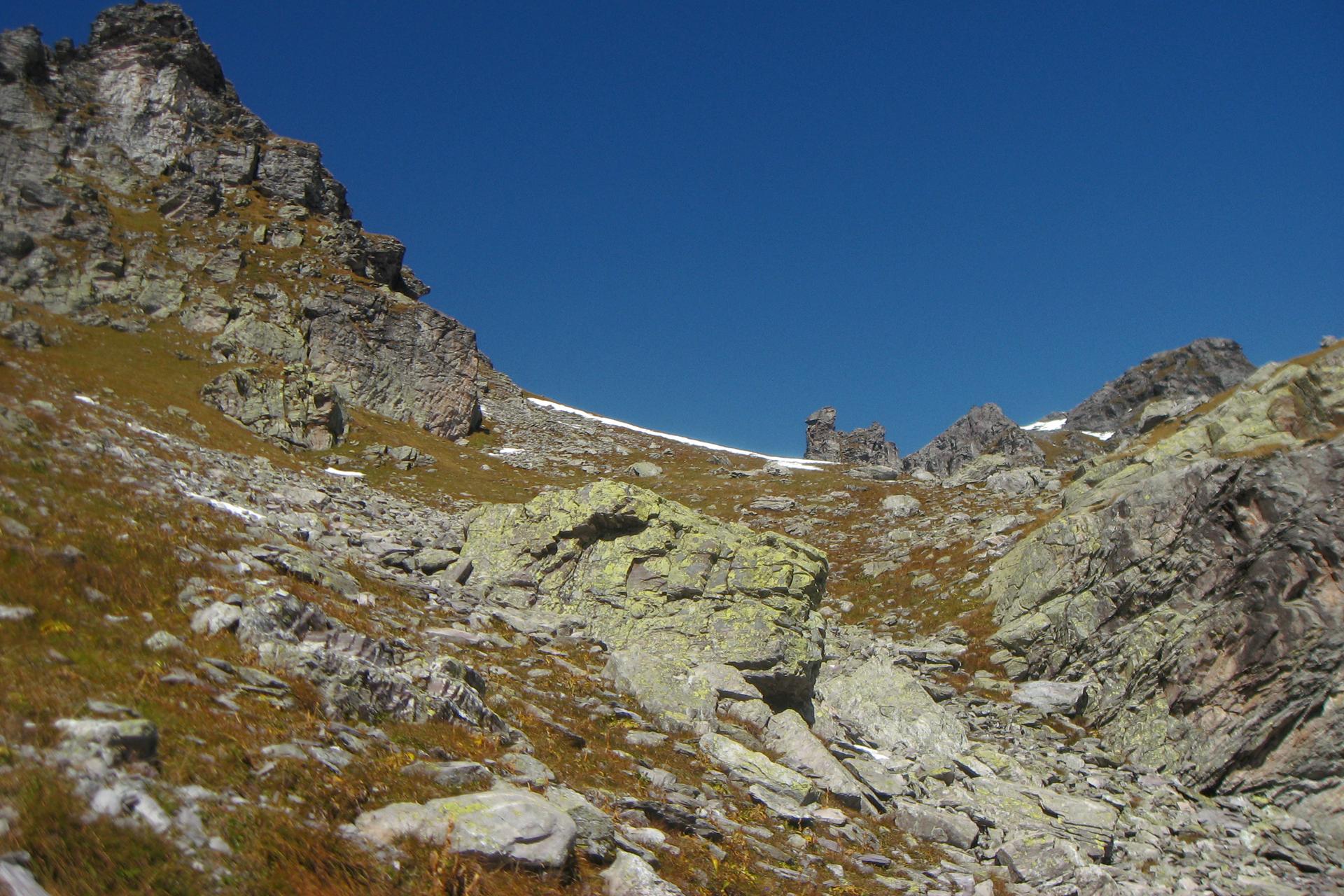 Fotografia przedstawia krajobraz skał na tle błękitnego nieba. Między szarymi skałami rośnie zrudziała trawa. Na skałach rosną żółte iszare porosty skorupiaste.