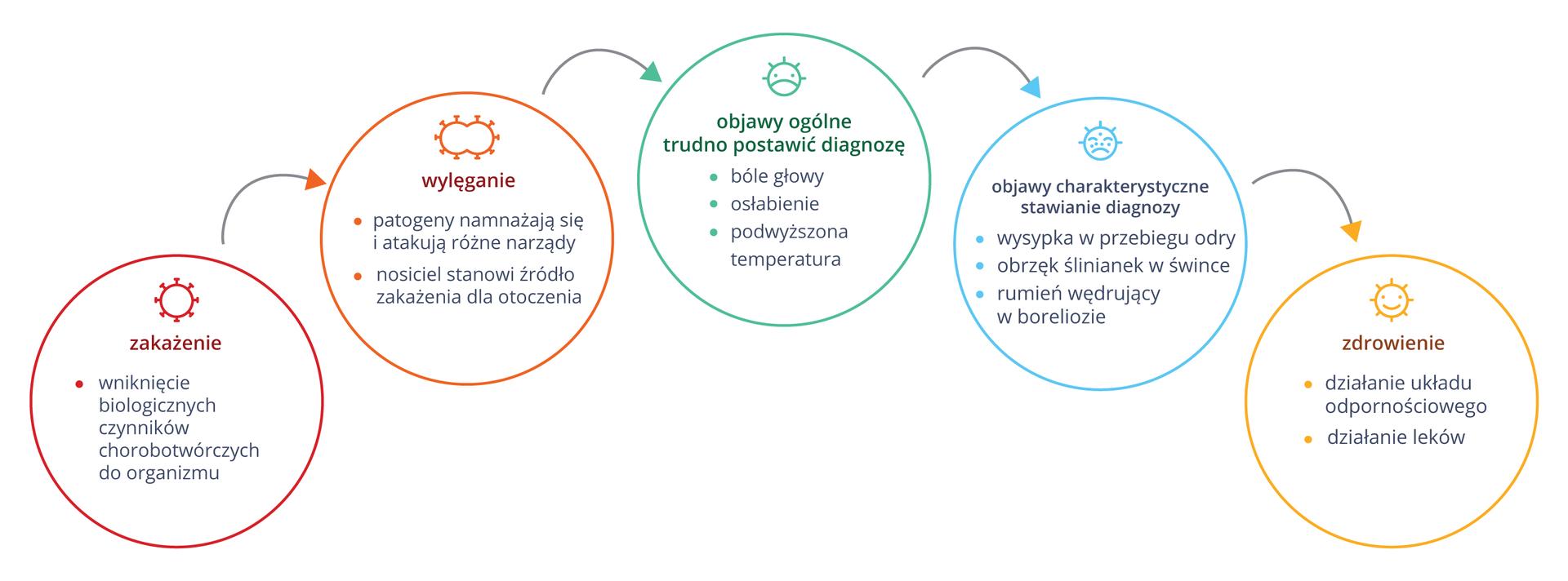 Ilustracja przedstawia schemat złożony zróżnokolorowych kół, ułożonych od lewej do prawej. Wkołach symbole przebiegu choroby iopis. Wczerwonym wniknięcie biologicznych czynników chorobotwórczych do organizmu. Wpomarańczowym wylęganie. Patogeny namnażają się iatakują różne narządy. Chory stanowi źródło zakażenia . Wturkusowym kole opisano objawy ogólne, przy których trudno postawić diagnozę: bóle głowy, osłabienie, podwyższona temperatura. Koło błękitne to objawy charakterystyczne, właściwe dla danej choroby. Diagnoza jest możliwa. Żółte koło to zdrowienie wefekcie działania układu odpornościowego ileków.