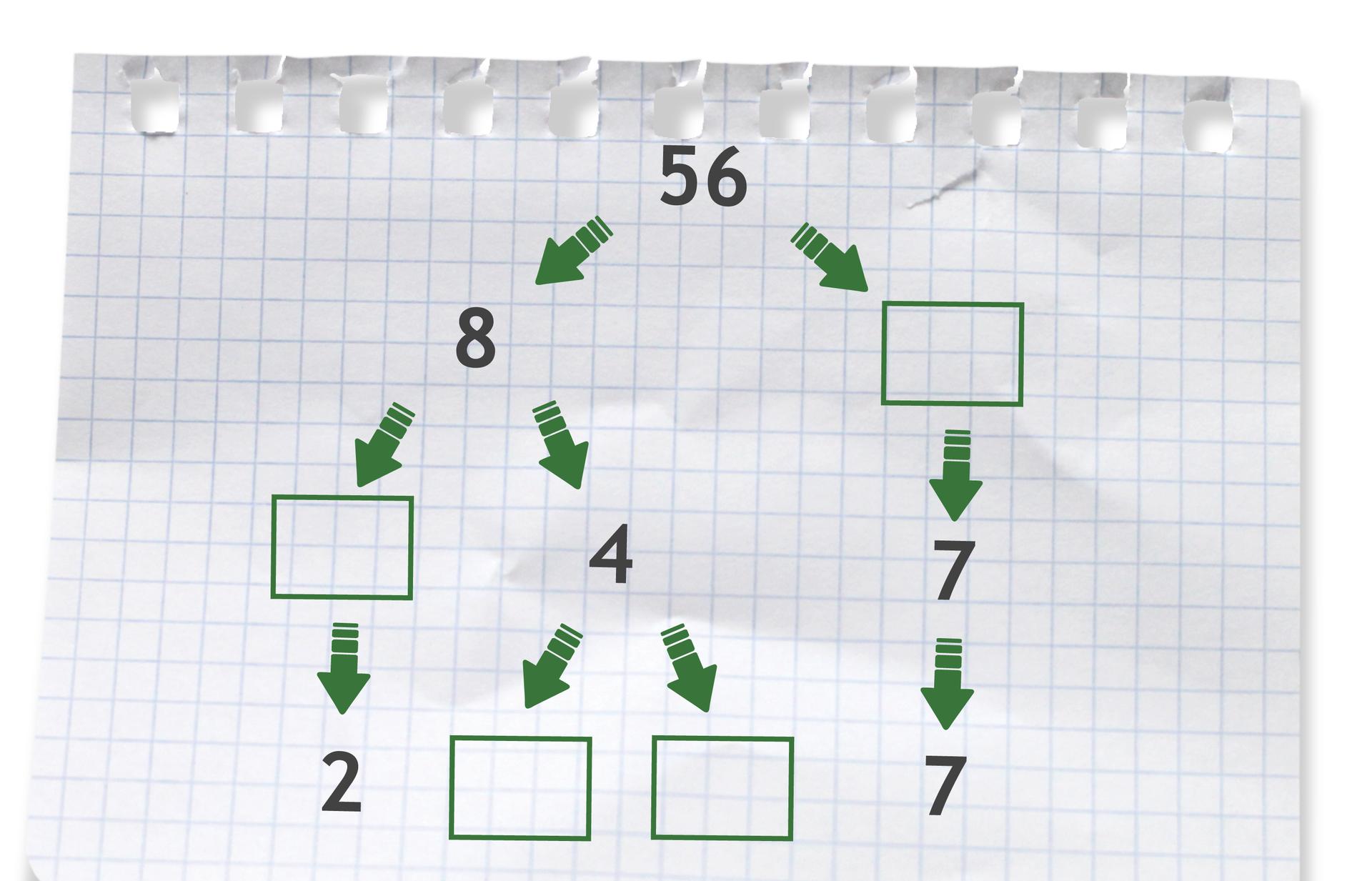Rysunek drzewka do rozłożenia liczby 56 na czynniki pierwsze.