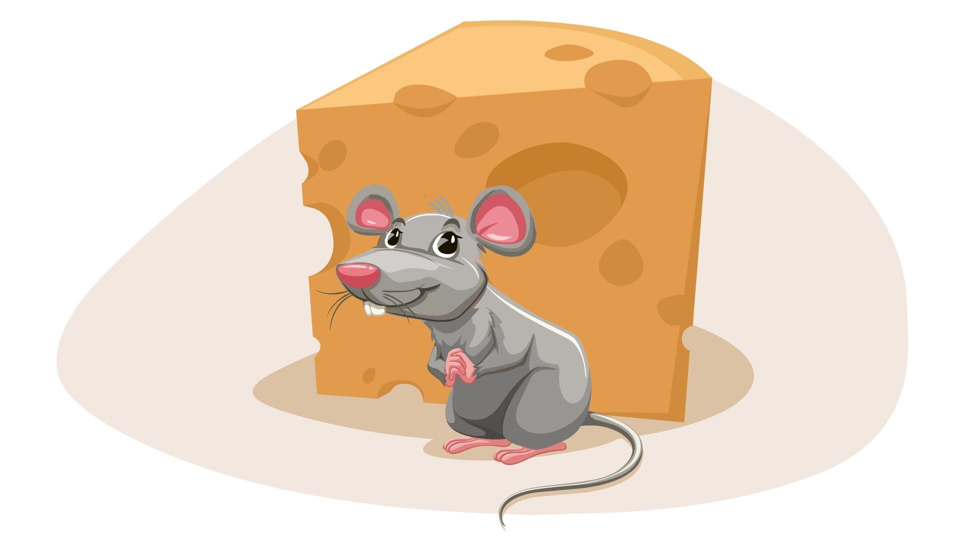 Ilustracja przedstawia mysz przed serem.