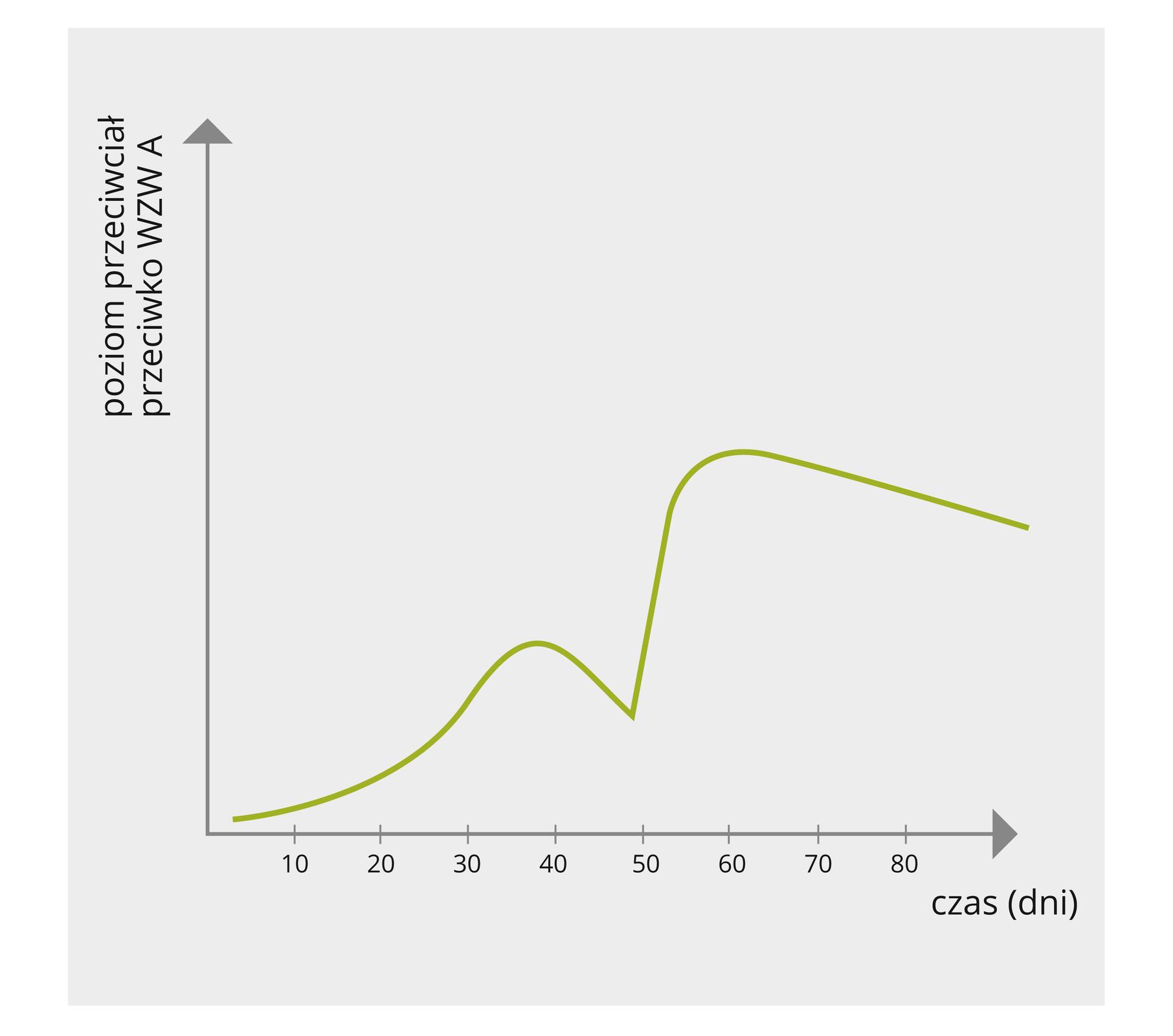 Wykres wpostaci zielonej linii przedstawia poziom przeciwciał przeciwko ospie we krwi pacjentki po upływie czasu.