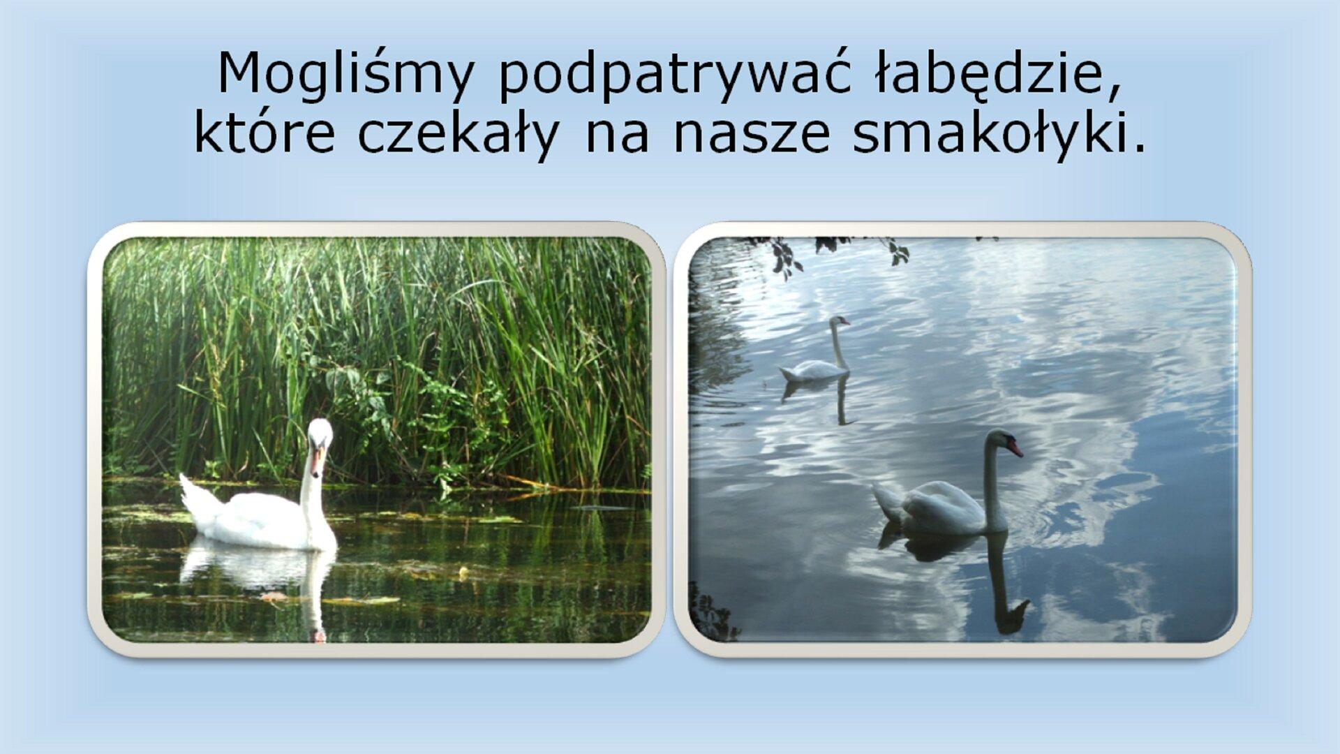 Slajd 2 galerii przykładowych slajdów prezentacji