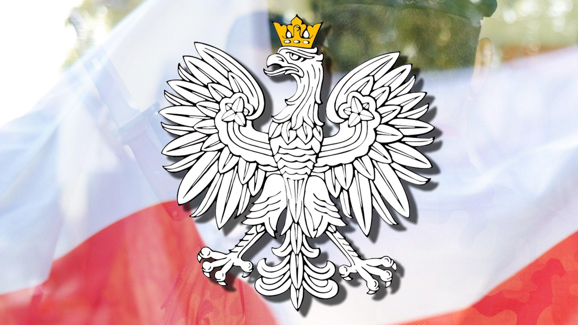 Wcentrum ilustracji umieszczony został polski Biały Orzeł wkoronie. Korona jest wkolorze złotym. Rysunek orła znajduje się na tle prześwitującej biało-czerwonej flagi. Flaga przesłania sylwetkę żołnierza kompanii honorowej. Całość ilustracji sugeruje obchody uroczystości państwowej zudziałem Kompanii Reprezentacyjnej Wojska Polskiego.