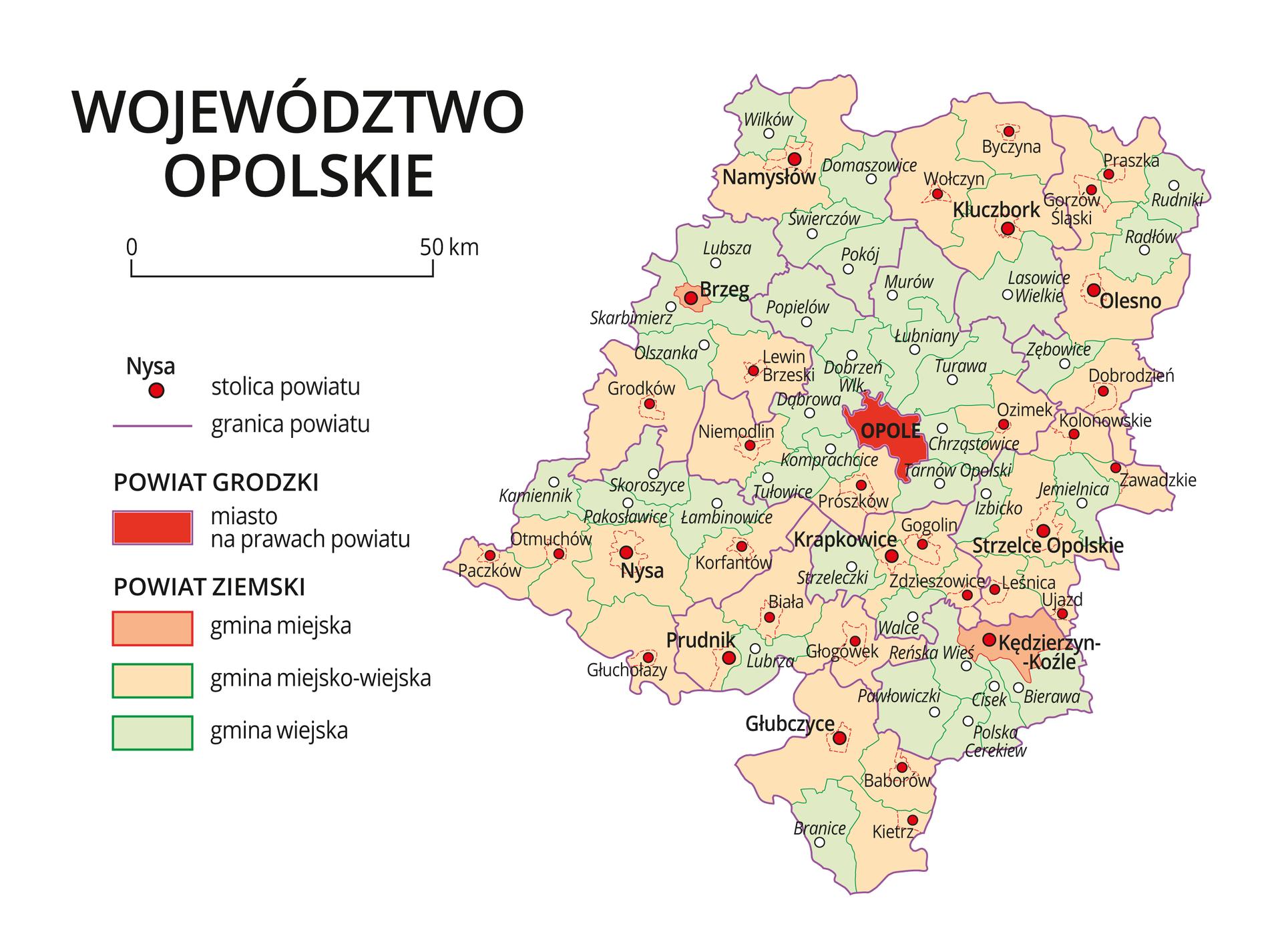 Mapa województwa opolskiego. Na mapie fioletowymi liniami zaznaczono granice powiatów ziemskich, dużymi czerwonymi kropkami zaznaczono miasta będące stolicami powiatów. Wobrębie powiatów ziemskich kolorami wyróżniono gminy miejskie, miejsko-wiejskie iwiejskie. Czerwonym kolorem wyróżniono powiaty grodzkie zmiastami na prawach powiatu, miasta te opisano dużymi literami. Kolory iznaki użyte na mapie opisano wlegendzie. Wlegendzie podziałka liniowa.