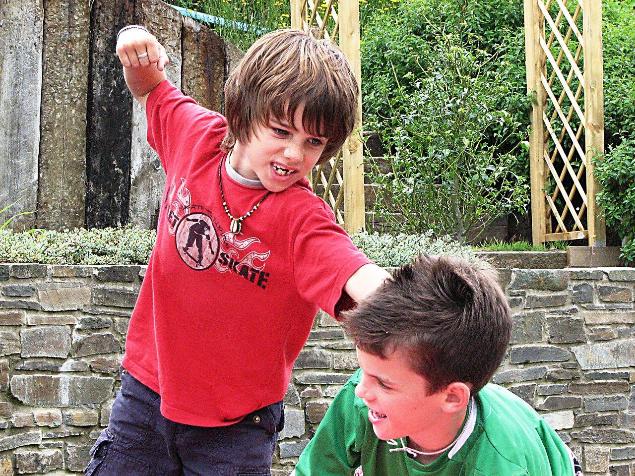 Konflikt fizyczny Walczą odostęp do komputera. Źródło: Aislinn Ritchie, Konflikt fizyczny, 2007, fotografia, licencja: CC BY-SA 2.0.