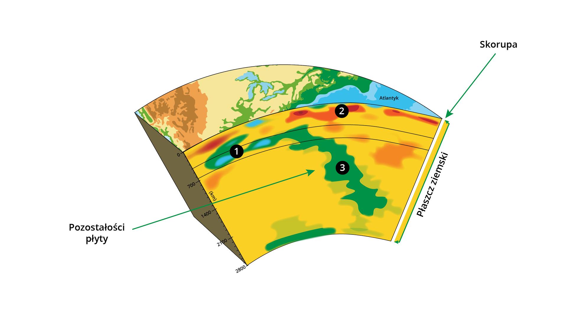 Ilustracja przedstawia przekrój przez warstwy Ziemi. Na powierzchni jest Atlantyk wraz zfragmentem lądu. Blisko powierzchni ziemi - najbardziej zewnętrzna warstwa - to skorupa. Ma grubość od 10-70 kilometrów. Pomiędzy skorupą ziemi ajądrem ziemi leży płaszcz ziemski. Ilustracja pokazuje, że ma grubość około 2000 kilometrów. Wśrodkowej części płaszcza ziemskiego zaznaczono strzałką pozostałości płyty - to wąski, schodzący wgłąb płaszcza fragment terenu.