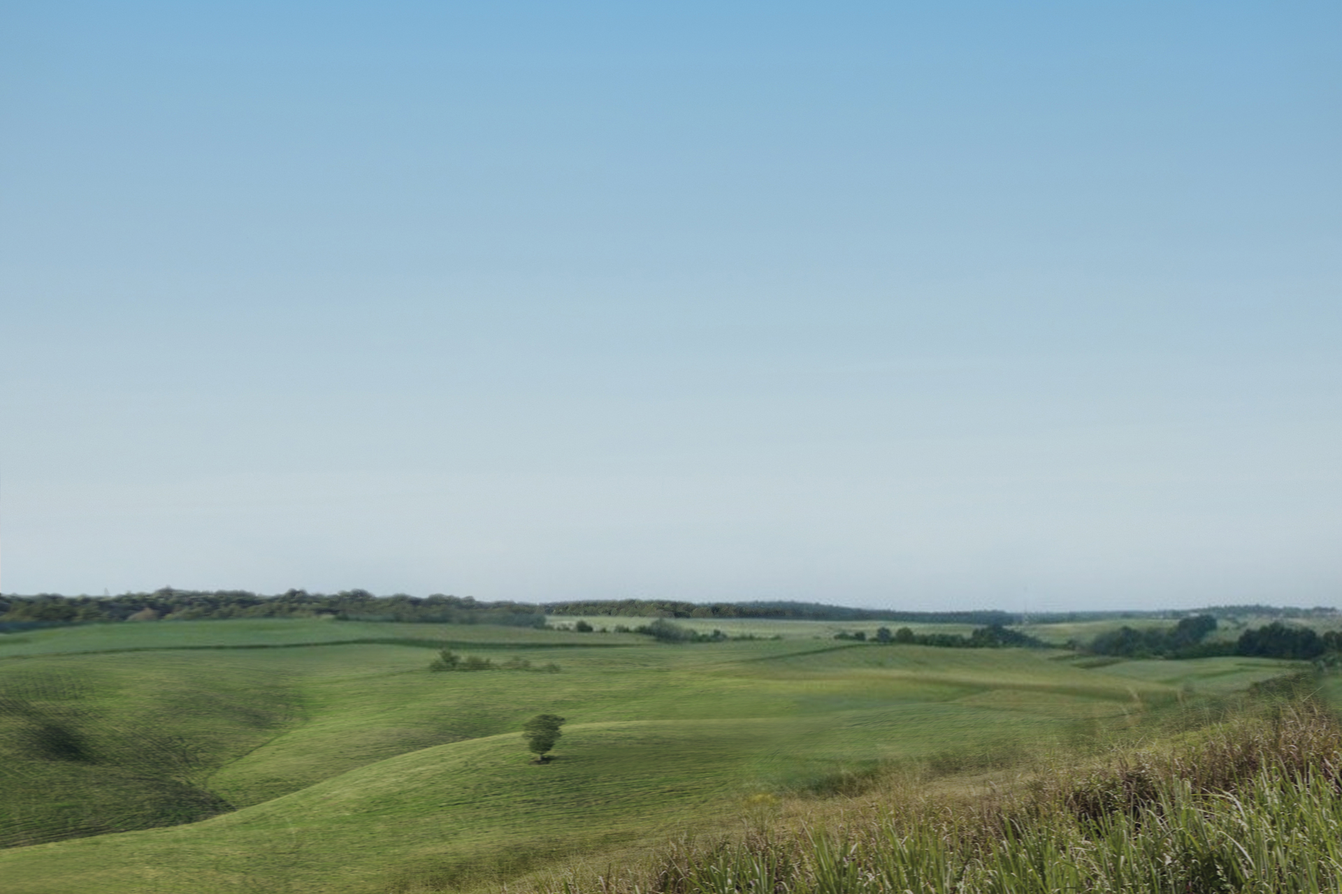Na zdjęciu rozległy, lekko pofalowany teren rolniczy.
