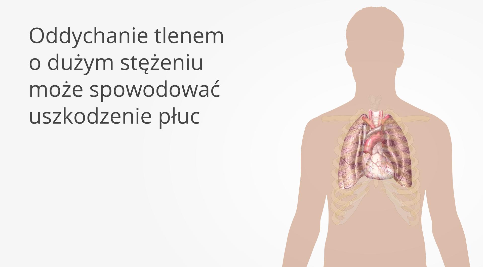 Drugi kadr galerii Ilustracja przedstawia sylwetkę człowieka znaniesionym na nią dokładnym rysunkiem płuc zamkniętych wpółprzezroczystej klatce żebrowej. Po lewej stronie napis: Oddychanie tlenem odużym stężeniu może spowodować uszkodzenie płuc.