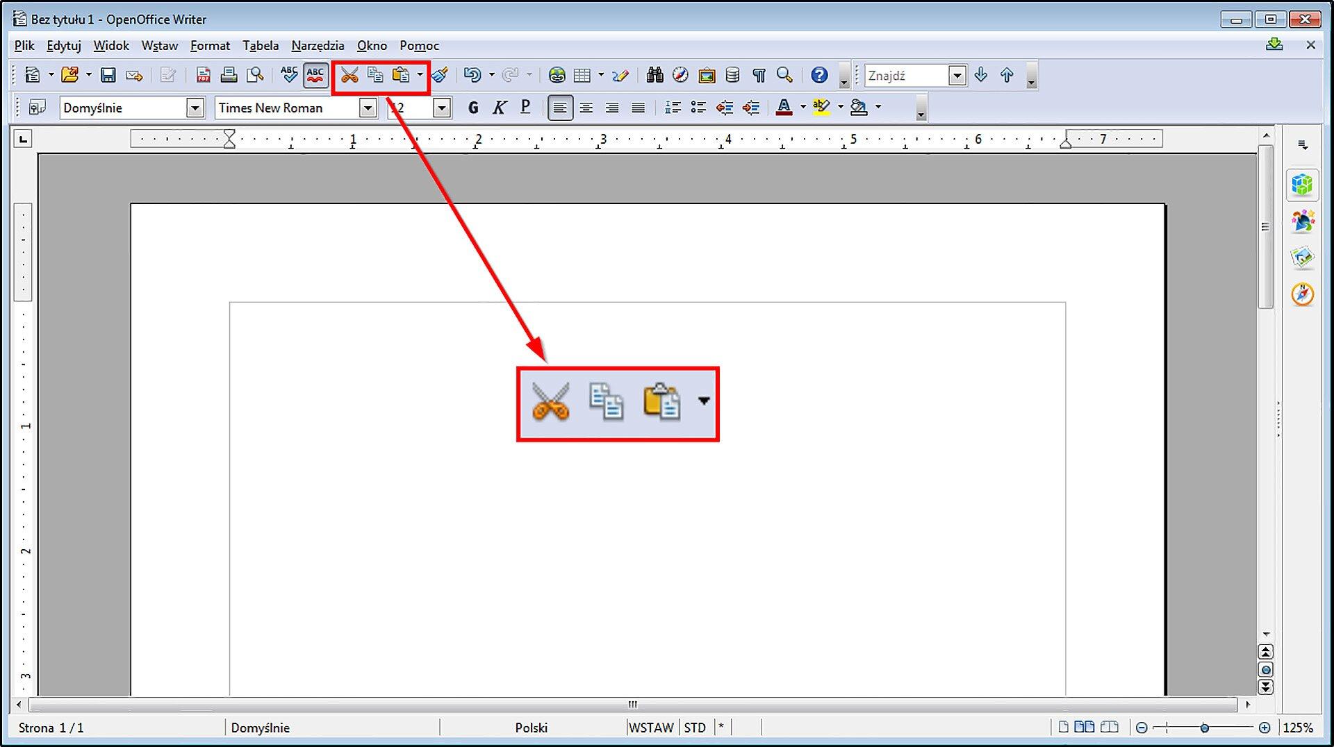 Slajd 2 galerii zrzutów okien przykładowych edytorów tekstu zzaznaczonymi narzędziami Wytnij, Kopiuj, Wklej