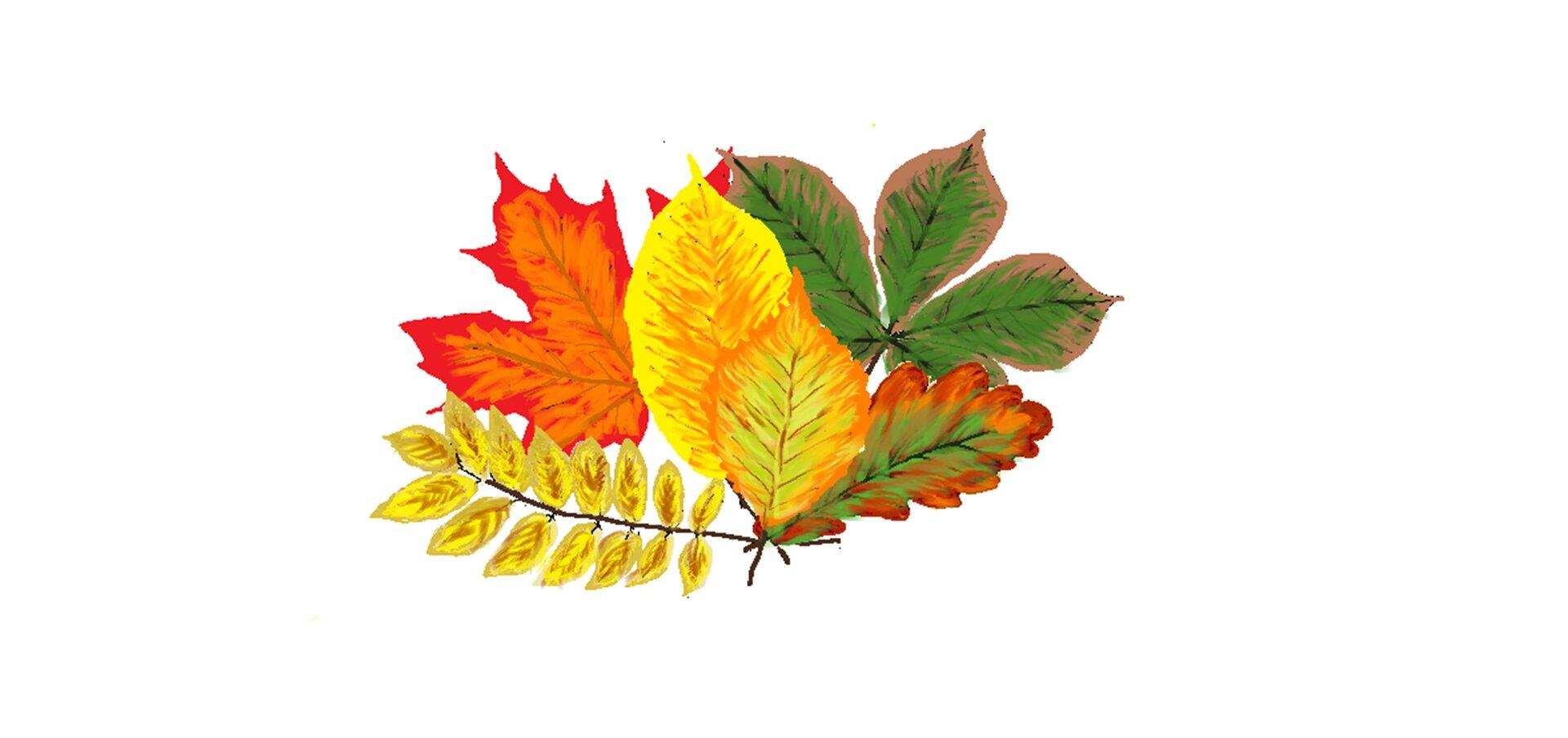 Ilustracja przedstawiająca bukiet jesiennych liści