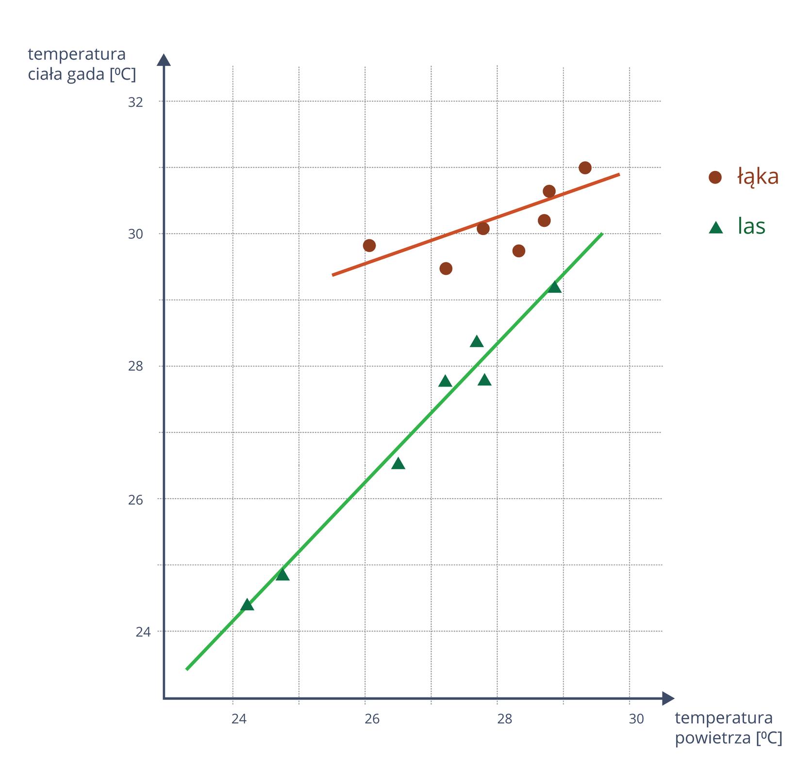 Na rysunku widać schemat zależności temperatury ciała gada od temperatury powietrza wstopniach Celsjusza. Na wykresie widać dwie linie, czerwoną oznaczającą łąkę oraz zieloną oznaczającą las. Linia czerwona jest mocno nachylona. Jej początek znajduje się na 25 ipół stopnia temperatury powietrza ikończy się na 30 stopniach. Temperatura ciała gada mieści się na łące wprzedziale 29 ipół stopnia a31 stopni. Jej wzrost jest więc niewielki. Linia zielona, oznaczająca las jest długa imniej nachylona. Wyznaczana przez nią temperatura powietrza zawiera się wprzedziale 23 ipół stopnia a29 ipół stopnia. Temperatura ciała gada rośnie od 23 ipół stopnia do 30 stopni. Wzrost temperatury zarówno powietrza, jak iciała gada wlesie jest bardzo znaczny.
