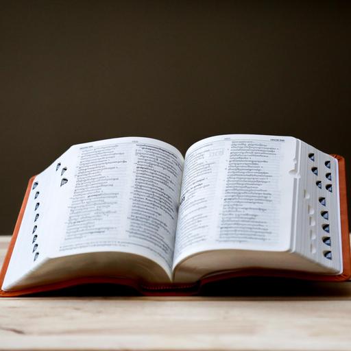 Jak korzystać ze słowników?