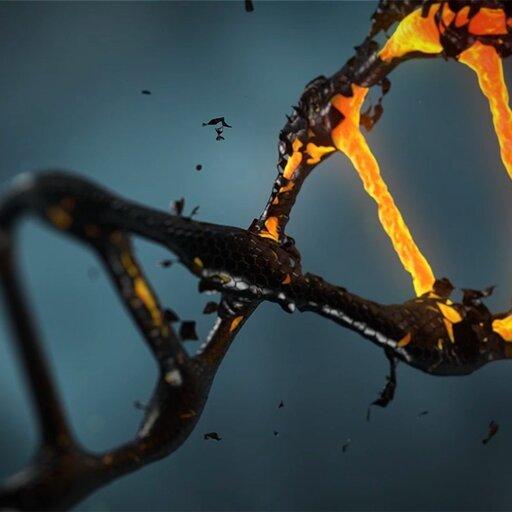 Rozwiązania sporów bioetycznych