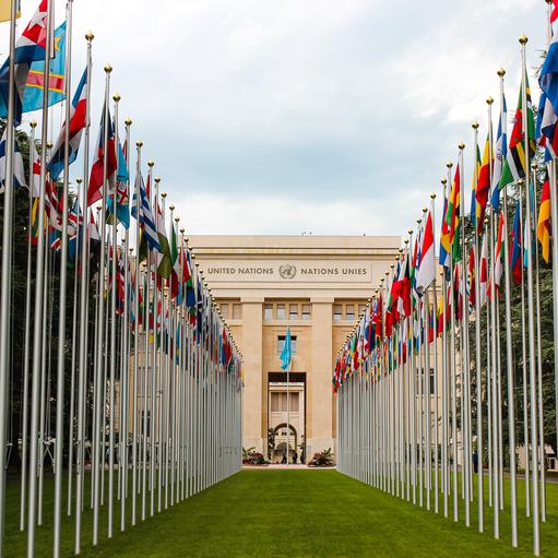 Agendy ONZ iobszar ich działalności